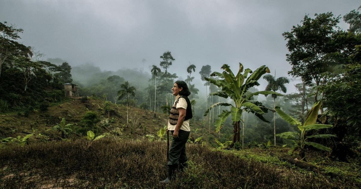 CAMBIO CLIMATICO Y MUJERES